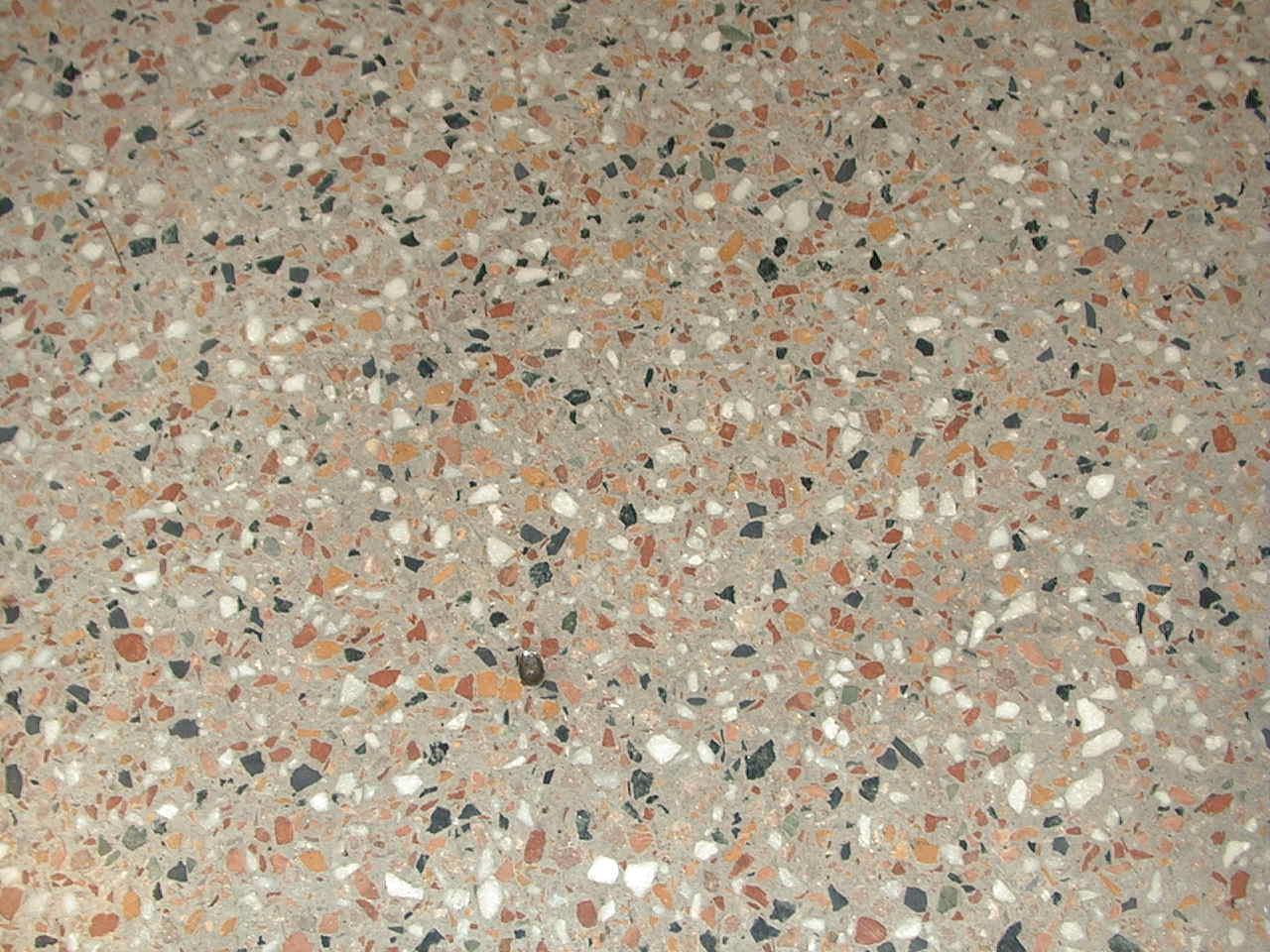 Terrazzo Floors Repair Polishing Restoration Experts